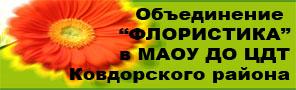 Объединение Флористика в МАОУ ДО ЦДТ Ковдорского района - сайт Банниковой Вероники Игоревны